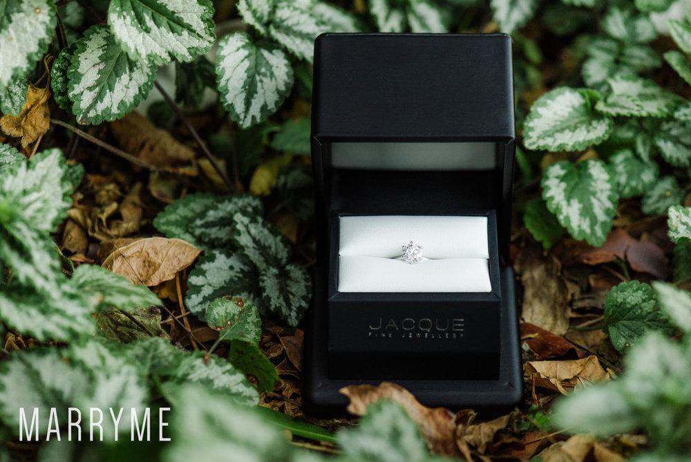 Marryme_Proposal_Sydney_Winter_Hyde_Park.jpg