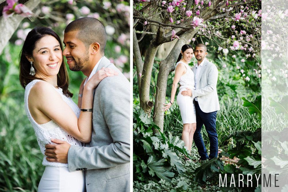 Marryme_Proposal_Sydney_Winter_Hyde_Park_3.jpg