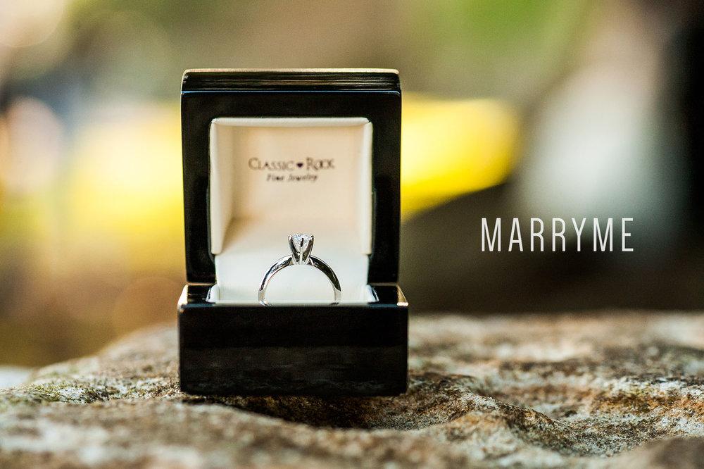 Sydney+Real+Marriage+Proposal+Kirribilli+Location+Sydney+1.jpg