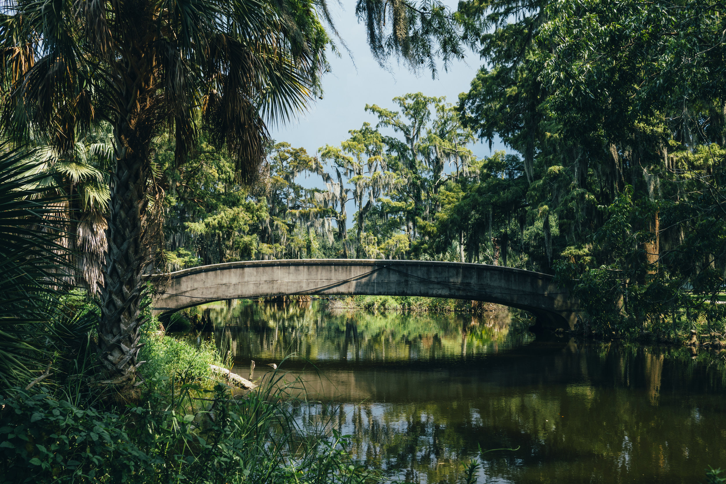 Communing With The Spirits - A Jungian Approach to the Healing Practices of Caribbean CultureNew Orleans, LouisianaJuly 25 - 29, 201912 Continuing Education Credits for Psychotherapists