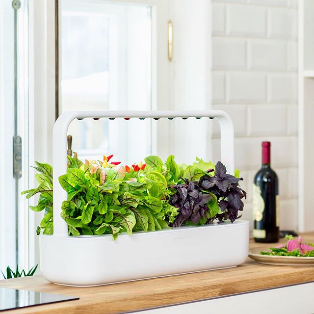 Update: We are adding smart lndoor garden in our homes. Now you can grow 100% organic herbs, fruits, salads and flowers, free from gmo and pesticides 🌶🍅🥬 🌼🌺 #staymeetswellness #wowfifty