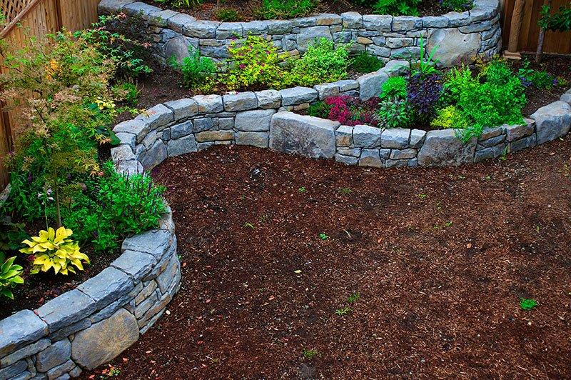 Rain gardens & bioswales -