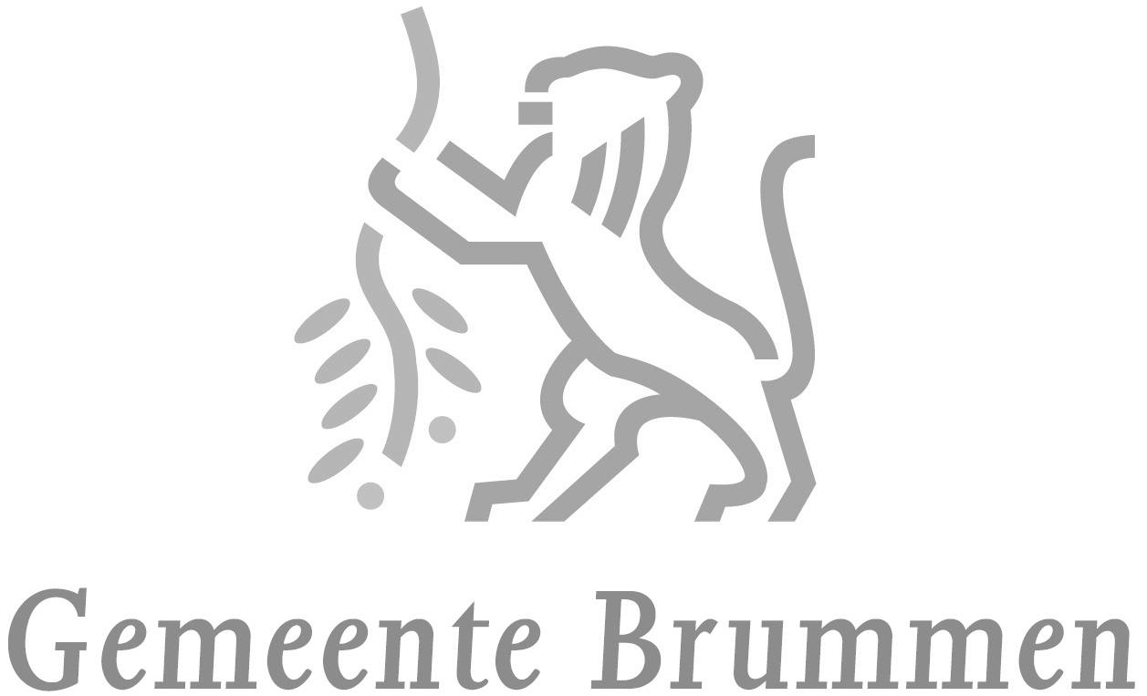 Gemeente-Brummen.png
