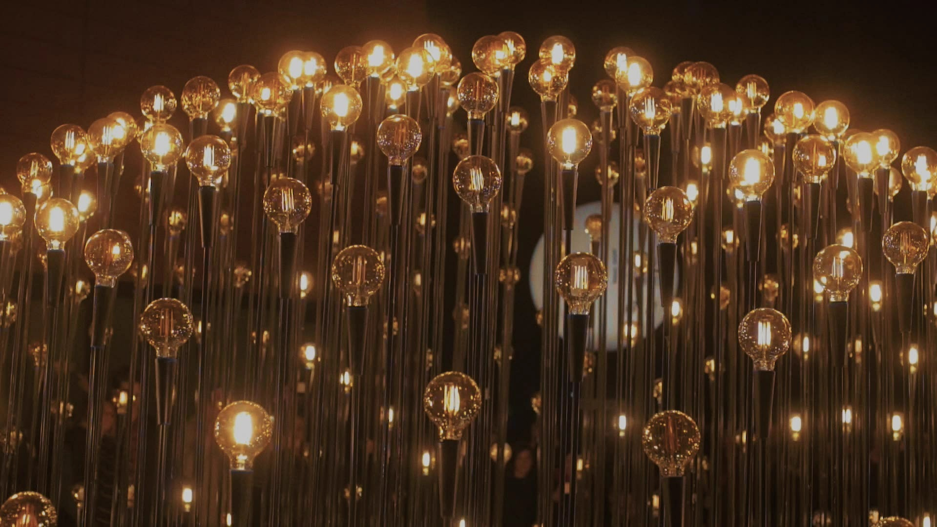 videoblocks-impressive-and-epic-futuristic-light-show-or-performance-with-multiple-vintage-retro-light-bulbs-beaming-in-darkness-represent-ideas-and-creativity-of-new-generation_HxM9CMcWdG.mov.00_00_26_21.Still001.jpg