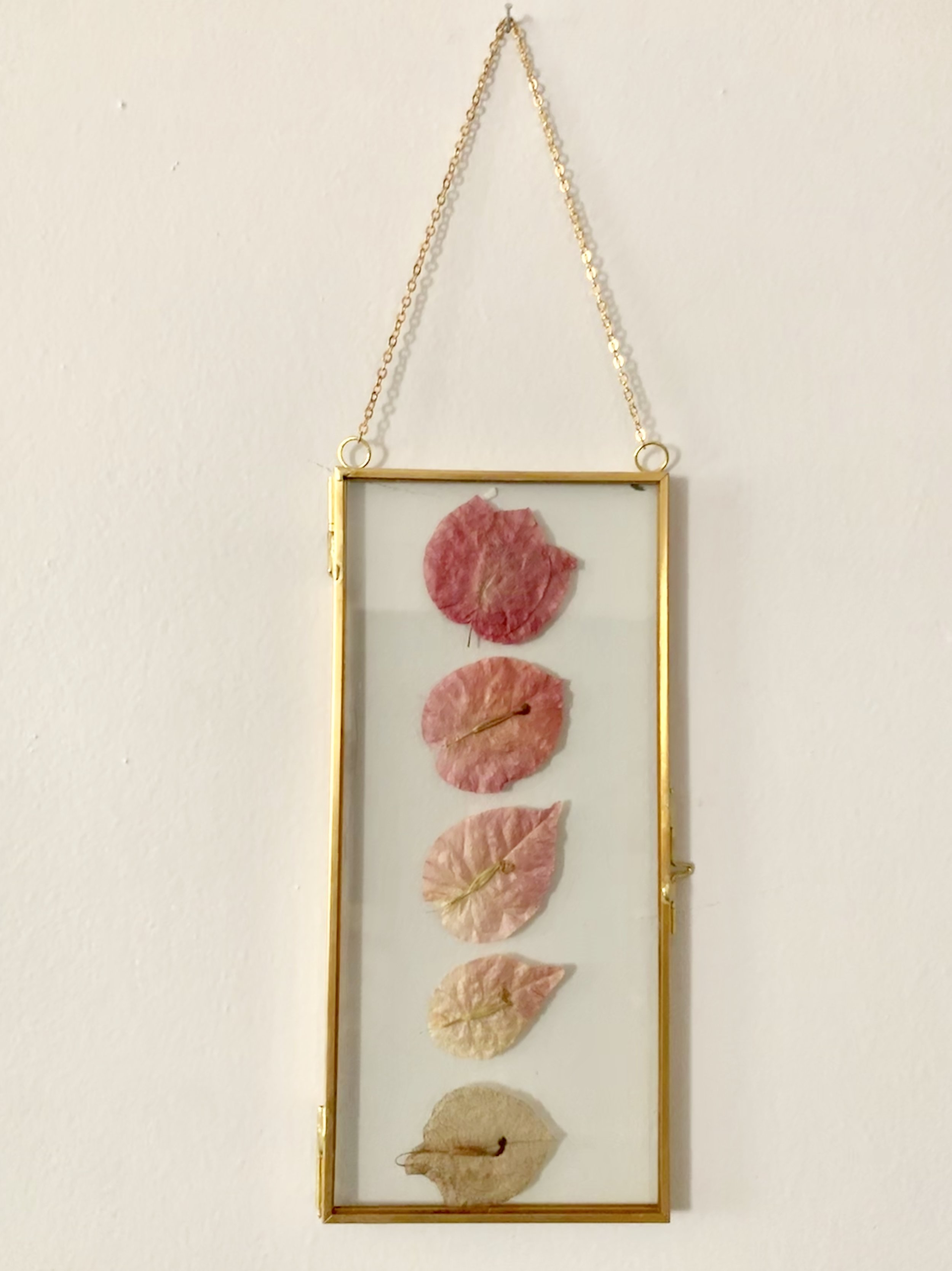 Pressed flowers from a honeymoon in Spain, Brass hanging photo keepsake. To have keepsake flowers preserved from weddings, proms, recitals, engagements, funerals, etc.pressed,  click here .