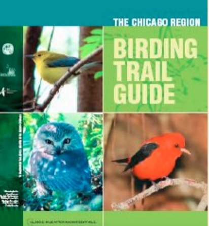 Chicago REgion Birding Trail Guide - This pocket guide covers the seven Illinois counties surrounding Chicago and the two north-west Indiana counties along Lake Michigan.Download PDFThis guide offers the highlights of birding in the Chicago region.