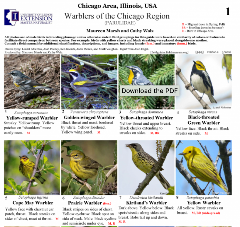 Field Museum Rapid Color Guides - Print up one of these seasonal guides to Chicago's common bird species.