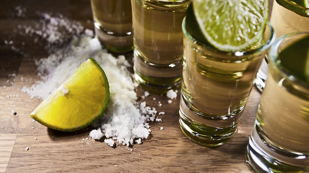 puerto-vallarta-tequila-tour-feb-2017.jpg