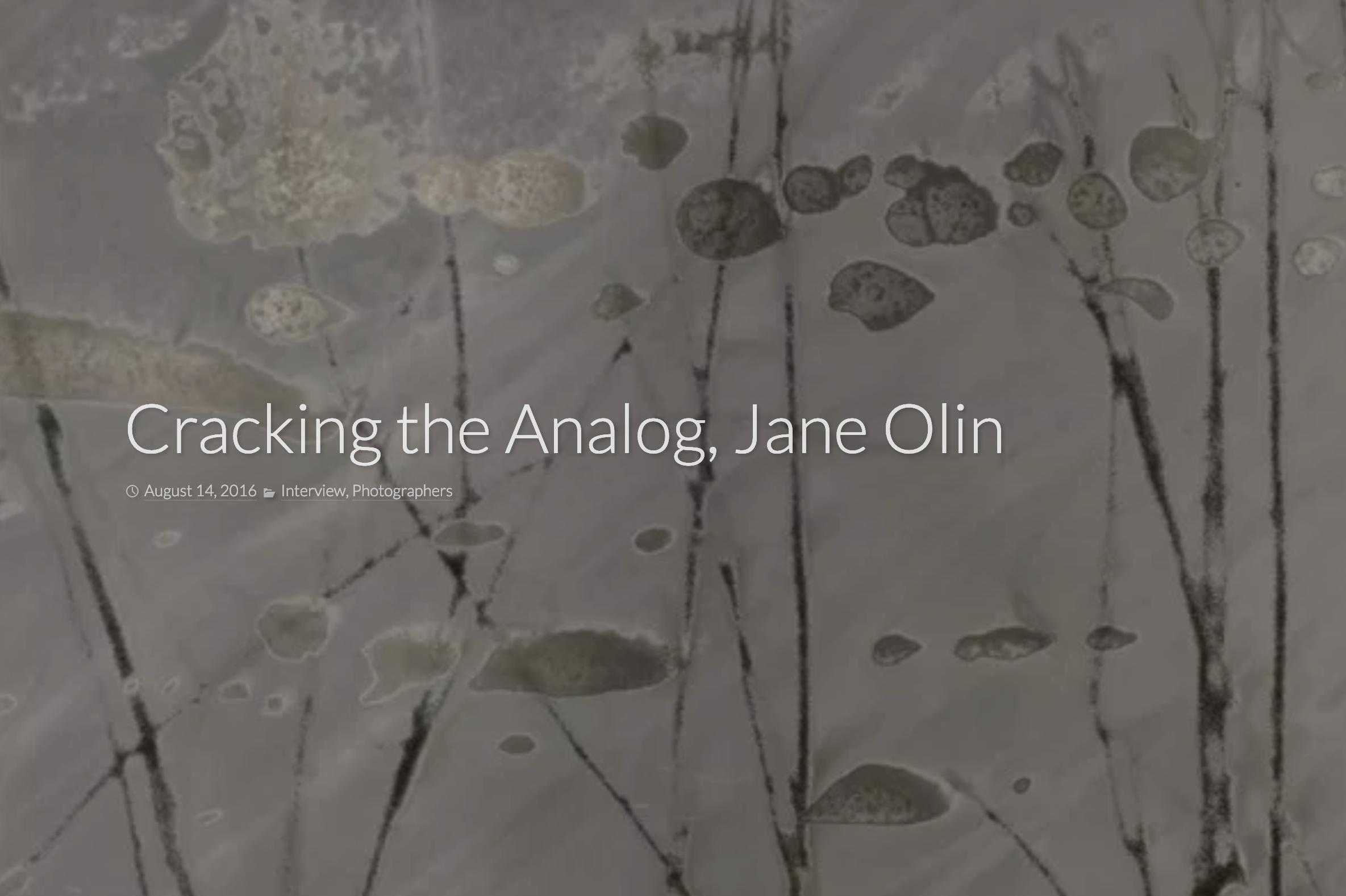 cracking-the-analog-jane-olin-rfotofolio.png
