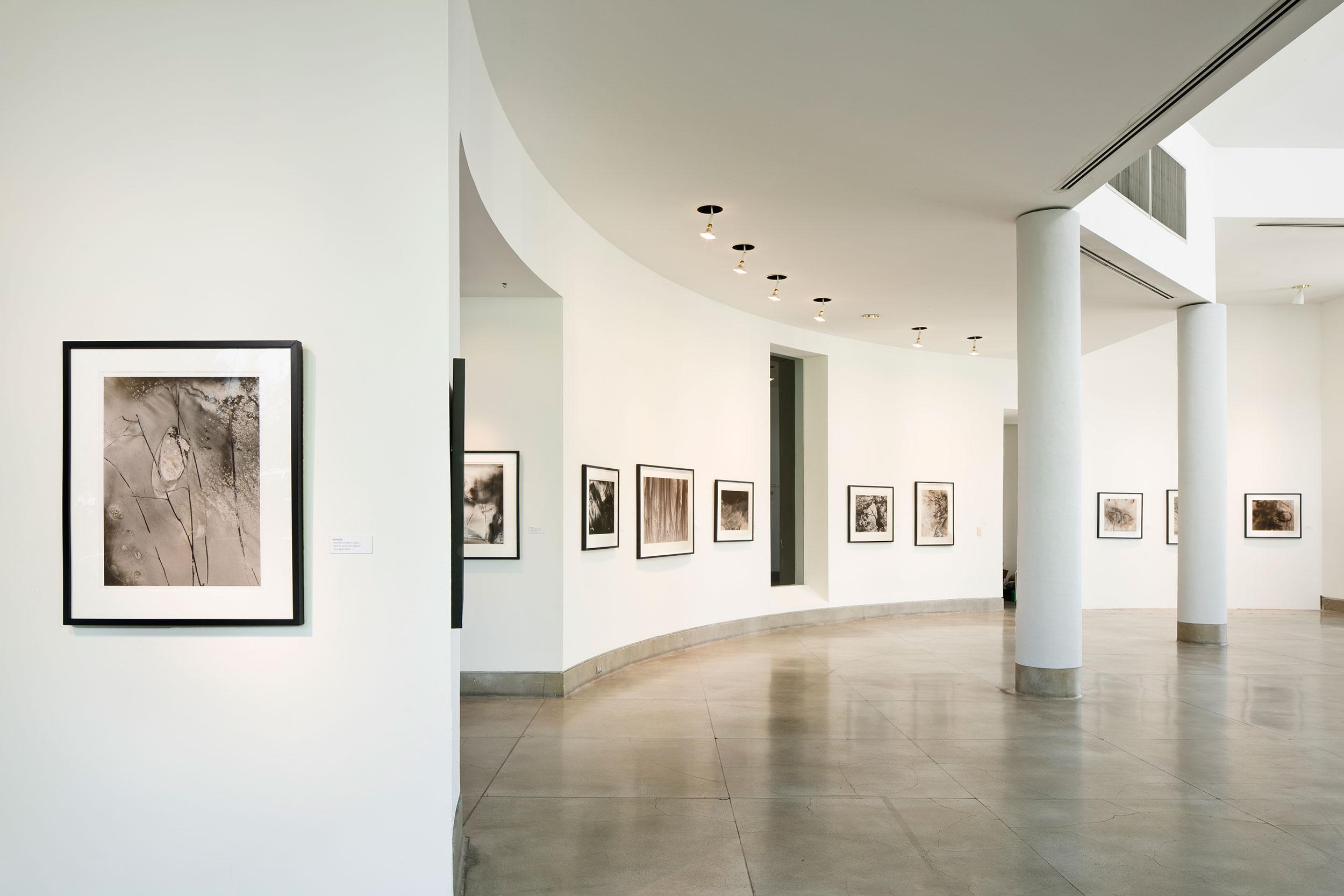 Jane Olin Triton Museum of Art 3.jpg