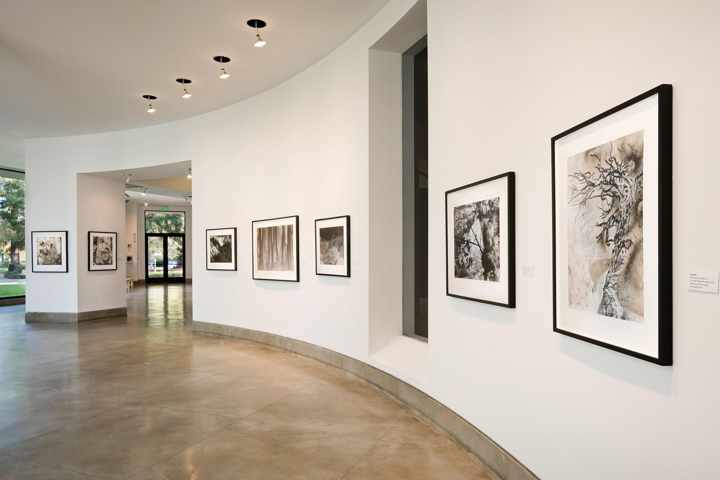 Jane Olin Triton Museum of Art 4.jpg