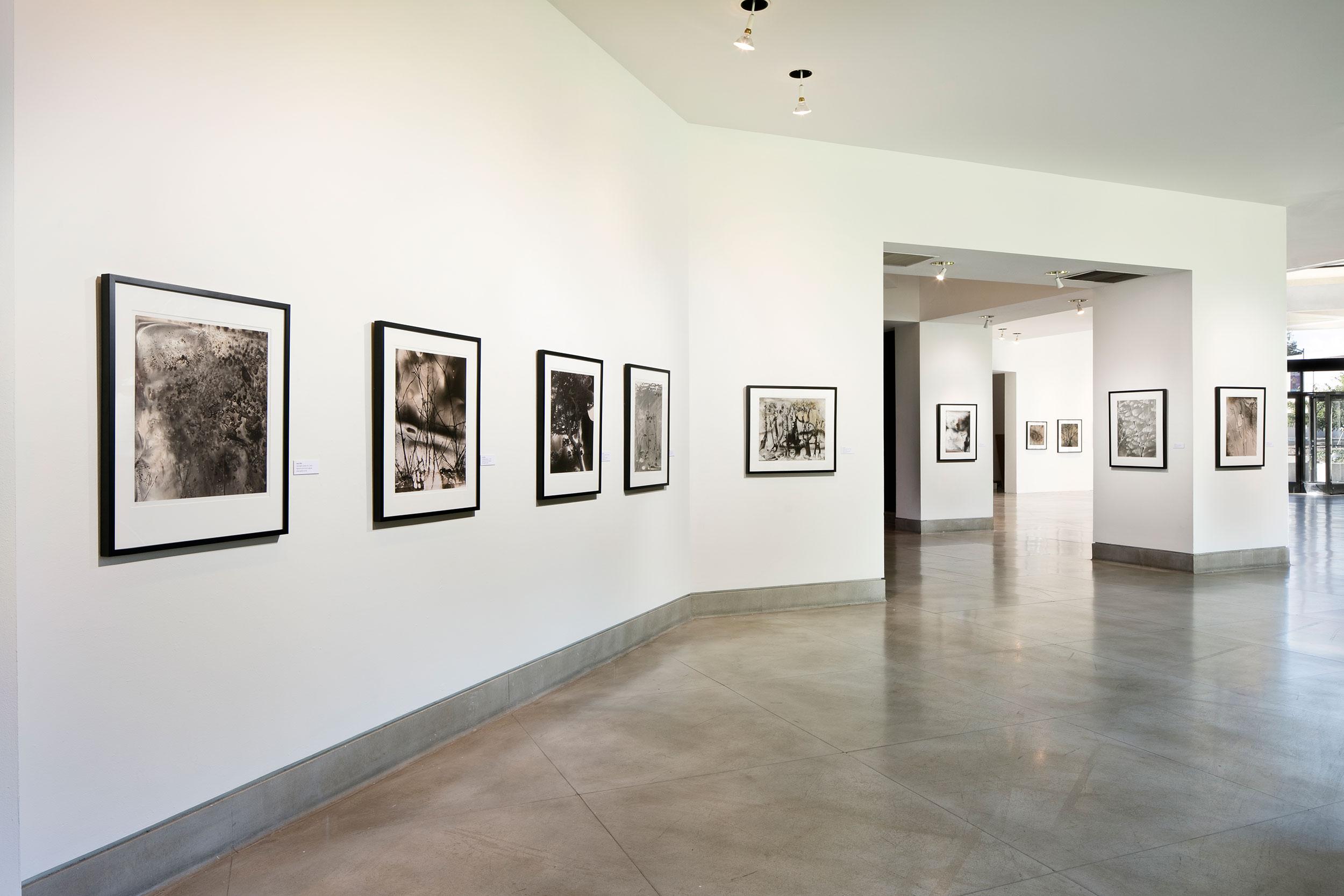 Jane Olin Triton Museum of Art 6.jpg