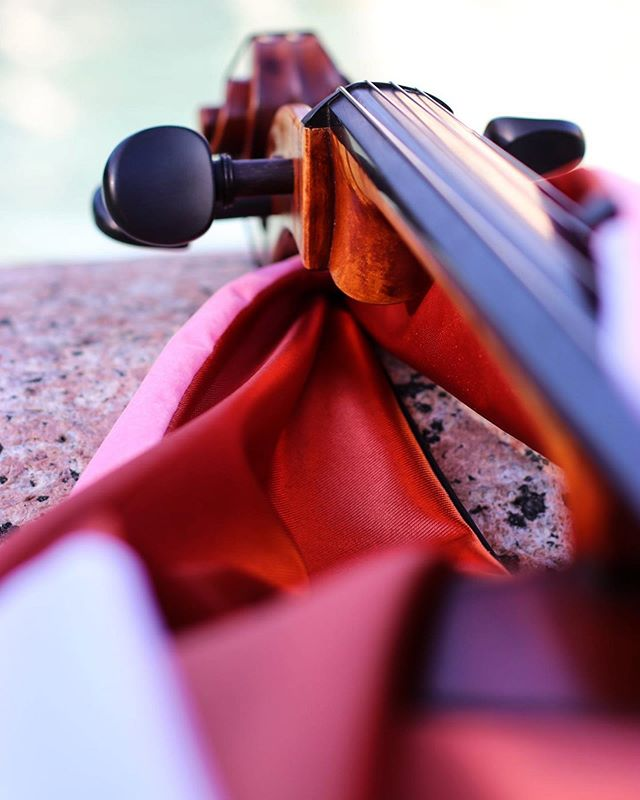 When you break to give your instrument a photoshoot. #musician #cello #photographer #like #follow #classicalmusic