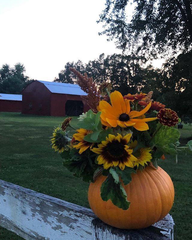 The end of our season is around the corner but not before we get to share a few pumpkin bouquets!