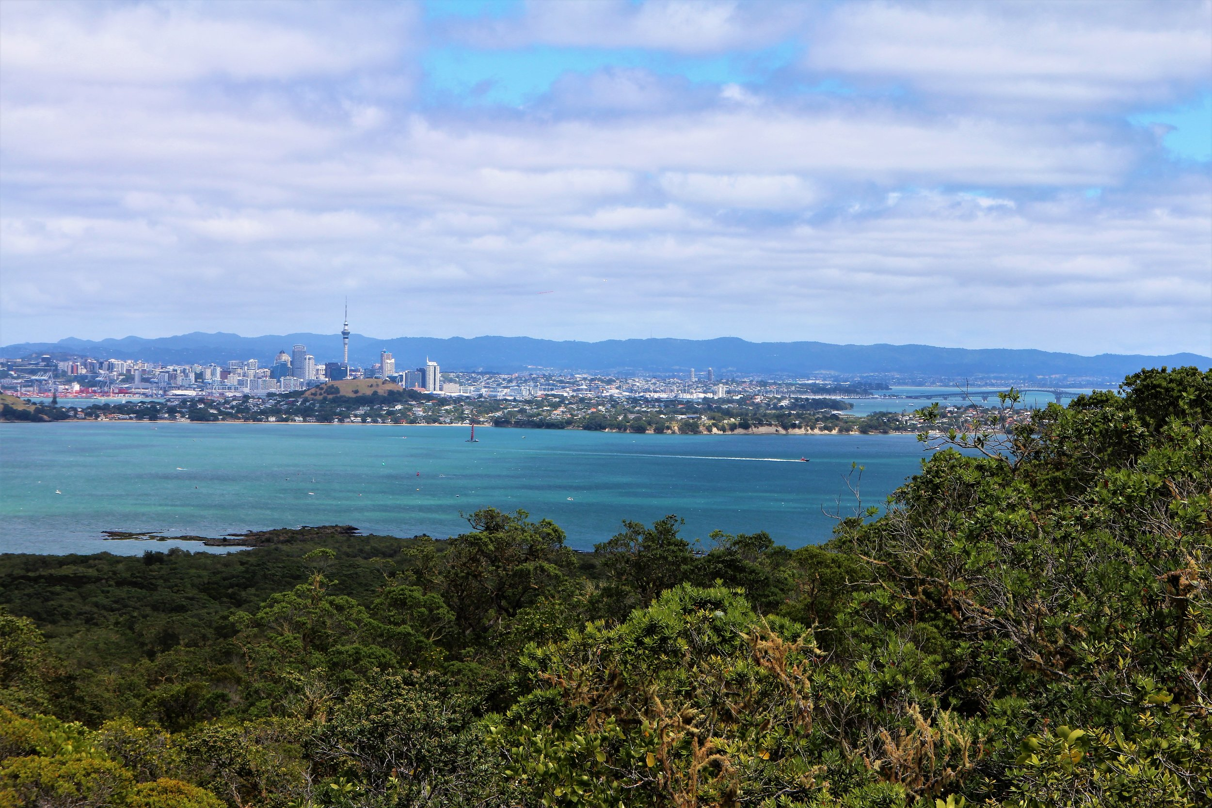 View of Auckland from Rangitoto Volcano, New Zealand