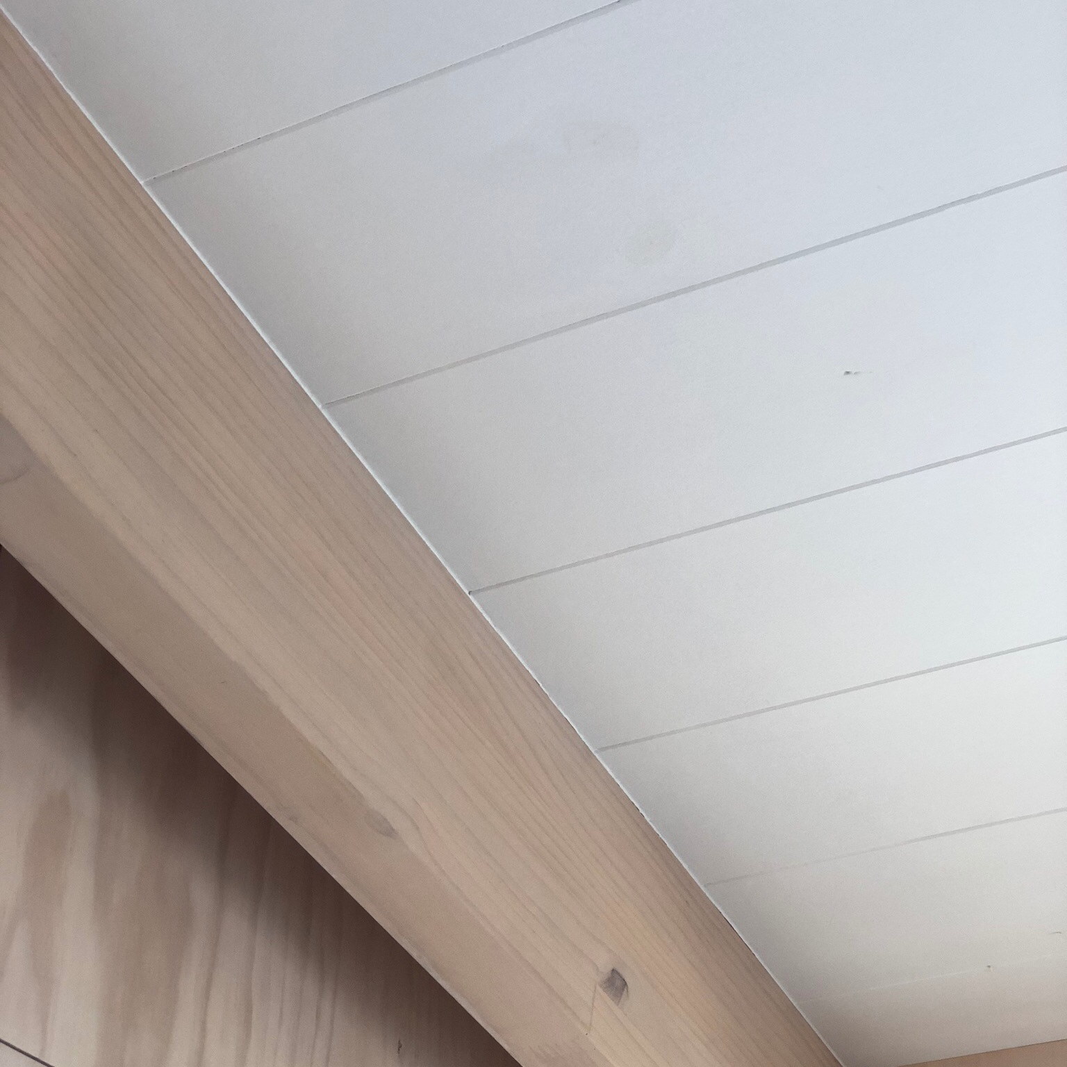 interior+ceiling+detail+.jpg
