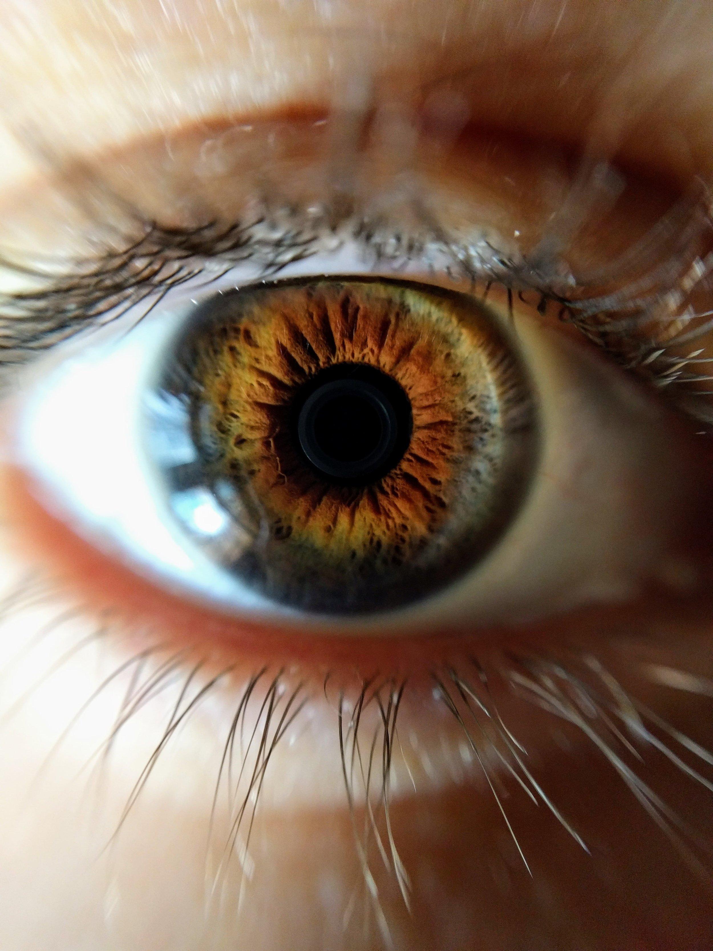 Brown Eye-min.jpg