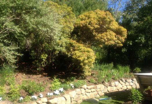 Gayle-Gardens-Before-After-02-A.jpg