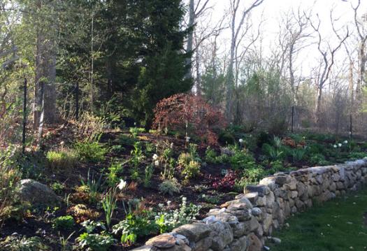 Gayle-Gardens-Before-After-02-B.jpg