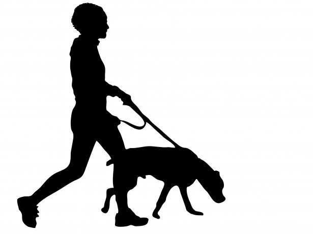 Runner Silhouette Dog Walker.jpg