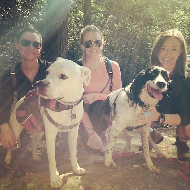 Hiking in East Tennessee with fellow Nasties, Kristen Stone and Lauren Van Sant and their dogs.