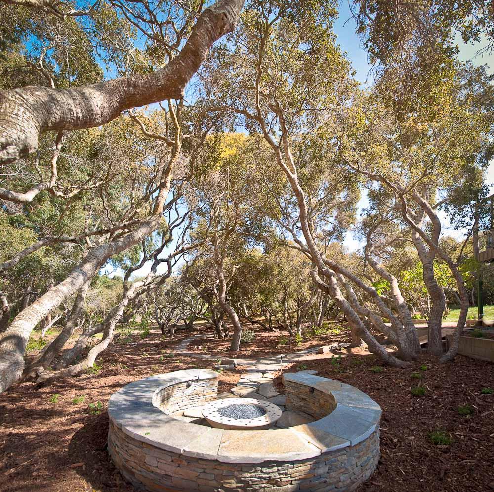 san-luis-obispo-landscaping-sage-ecological-landscapes-davidson-residence-web-size-1-of-23_20120404-untitled-shoot-untitled-2.jpg