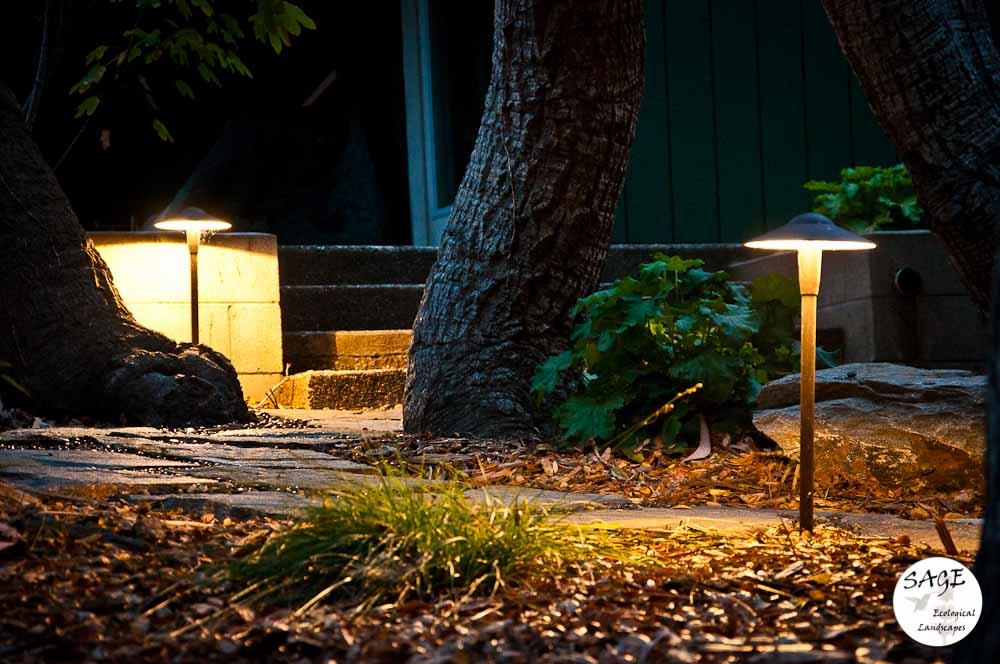 san-luis-obispo-landscaping-sage-ecological-landscapes-davidson-residence-web-size-13-of-18__dsc1393.jpg