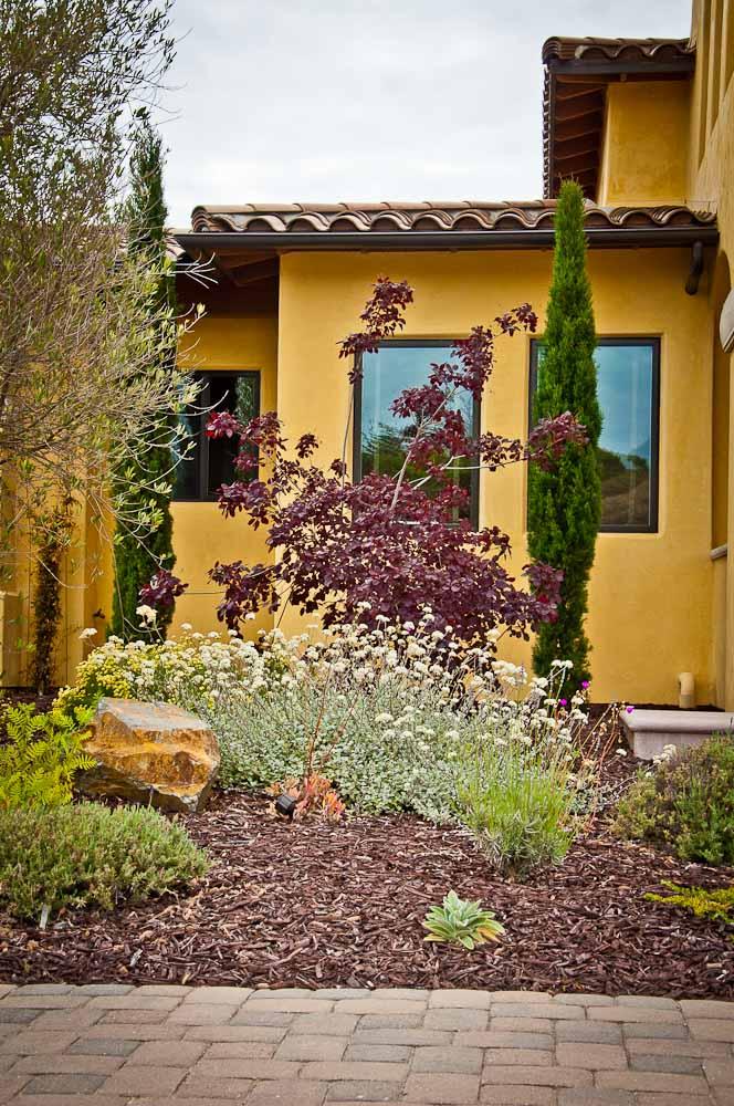san-luis-obispo-landscaping-sage-ecological-landscapes-o-residence-web-size-13-of-92__dsc0530.jpg