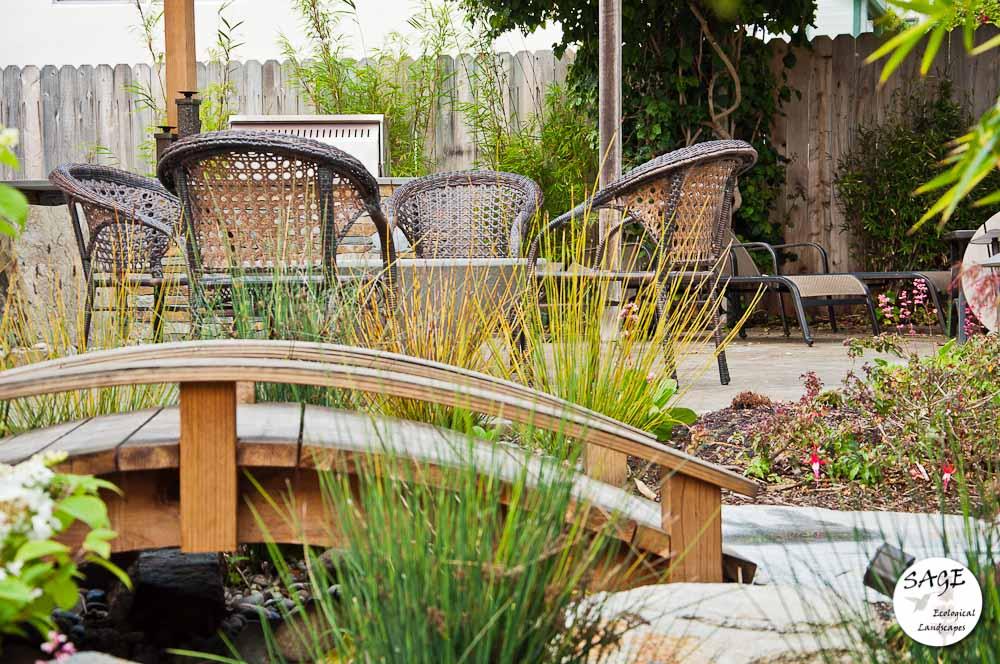 san-luis-obispo-landscaping-sage-ecological-landscapes-bush-residence-web-size-11-of-41__dsc5436.jpg