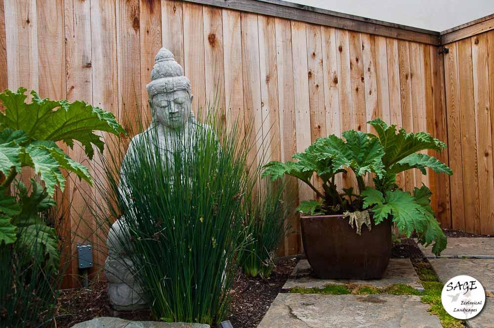 san-luis-obispo-landscaping-sage-ecological-landscapes-bush-residence-web-size-17-of-41__dsc5425.jpg