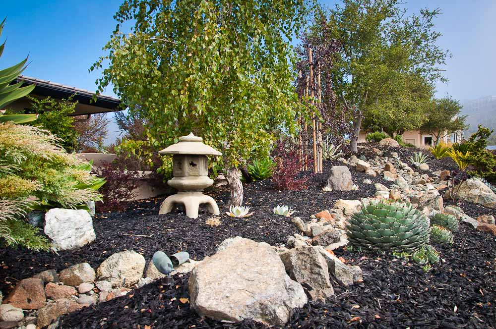 san-luis-obispo-landscaping-sage-ecological-landscapes-baker-avila-residence-web-size-5-of-73_20120731-untitled-shoot-untitled-6108.jpg