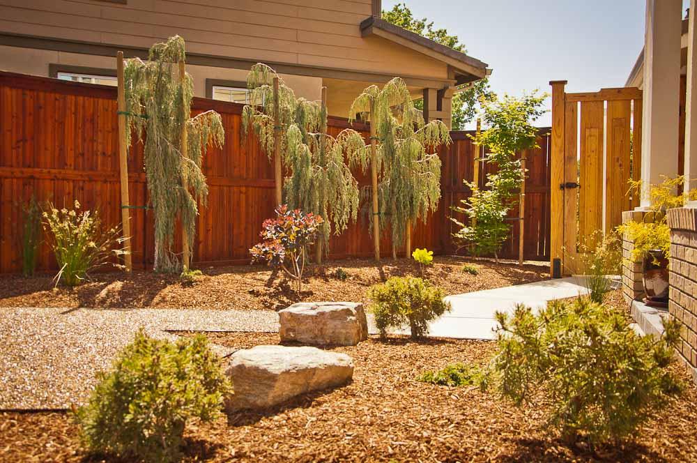 san-luis-obispo-landscaping-sage-ecological-landscapes-brown-residence-web-size-17-of-43__dsc7602.jpg