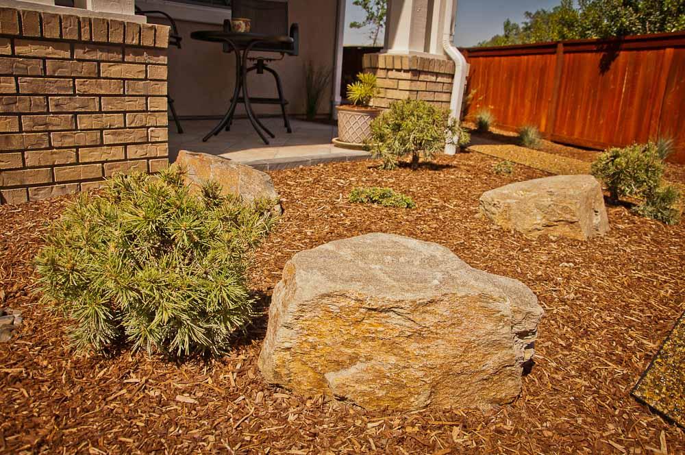 san-luis-obispo-landscaping-sage-ecological-landscapes-brown-residence-web-size-16-of-43__dsc7609.jpg