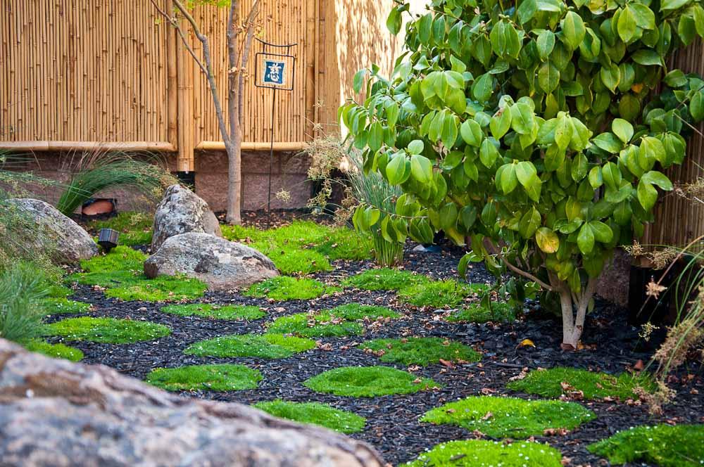 san-luis-obispo-landscaping-sage-ecological-landscapes-anderson-residence-web-size-18-of-44_20120914-untitled-shoot-untitled-8998.jpg