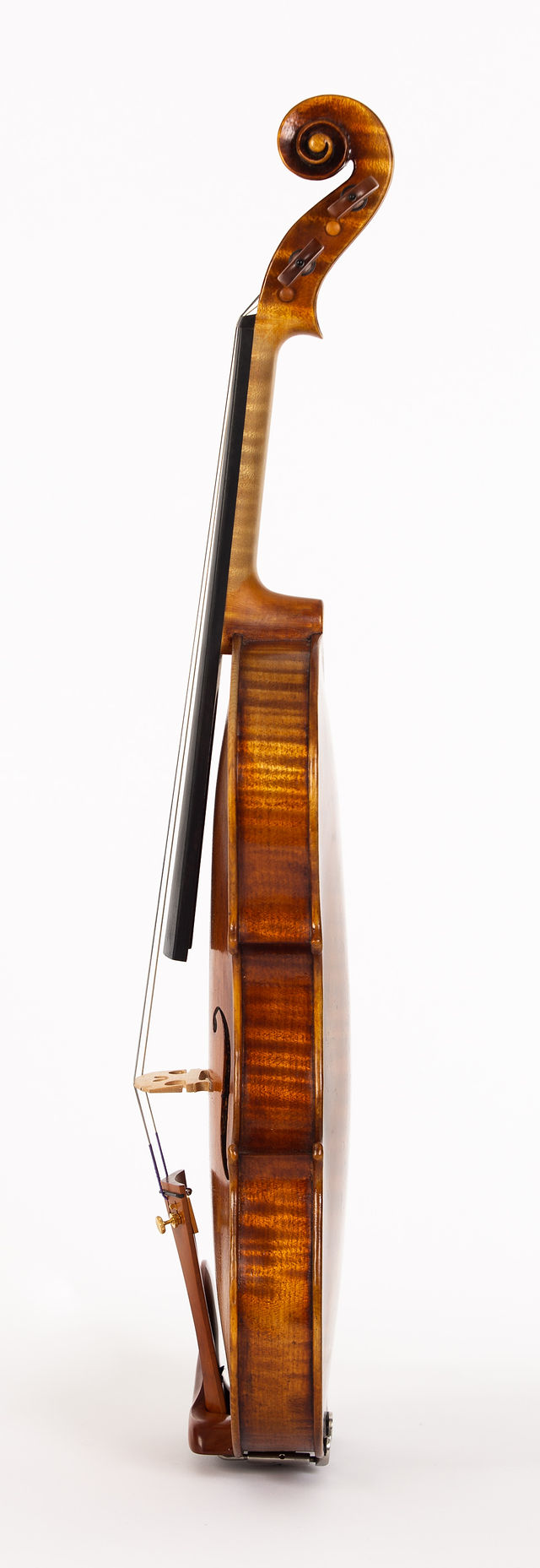 Starkie Strad model violin 2018 side.jpg
