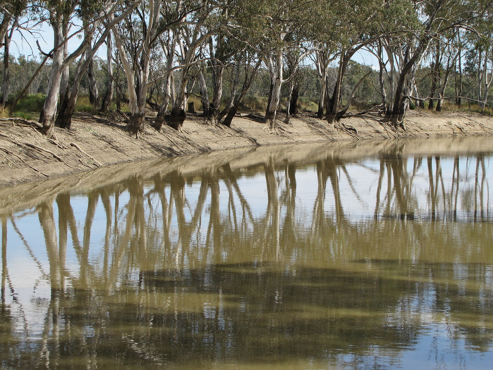 060. Reflections on the Bidgee.JPG