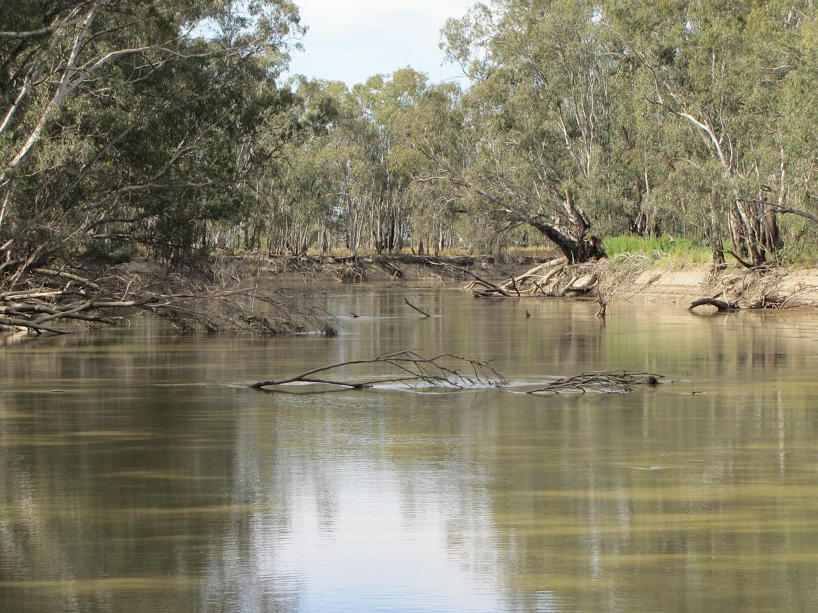 012.Murrumbidgee River..JPG