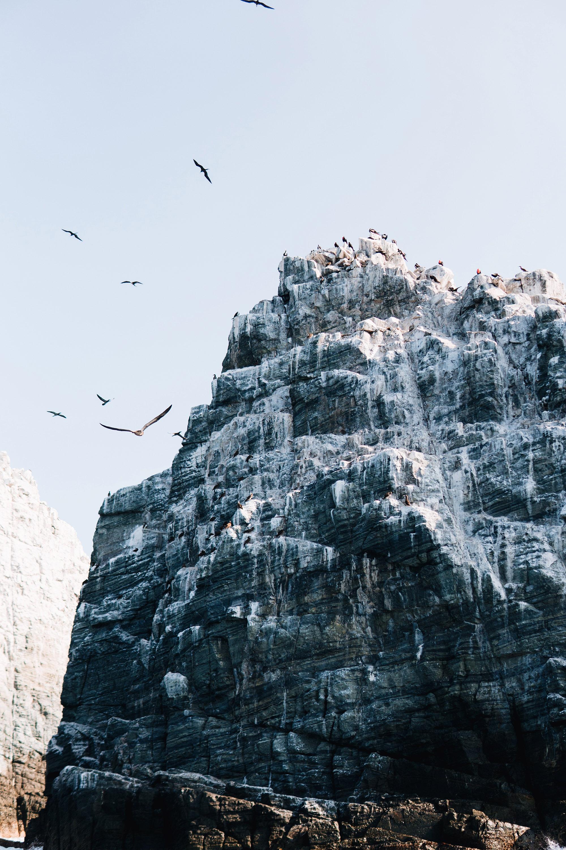 Ballenas-Ixtapa-Zihuatanejo-Fotografia-Heiko-Bothe-9.JPG