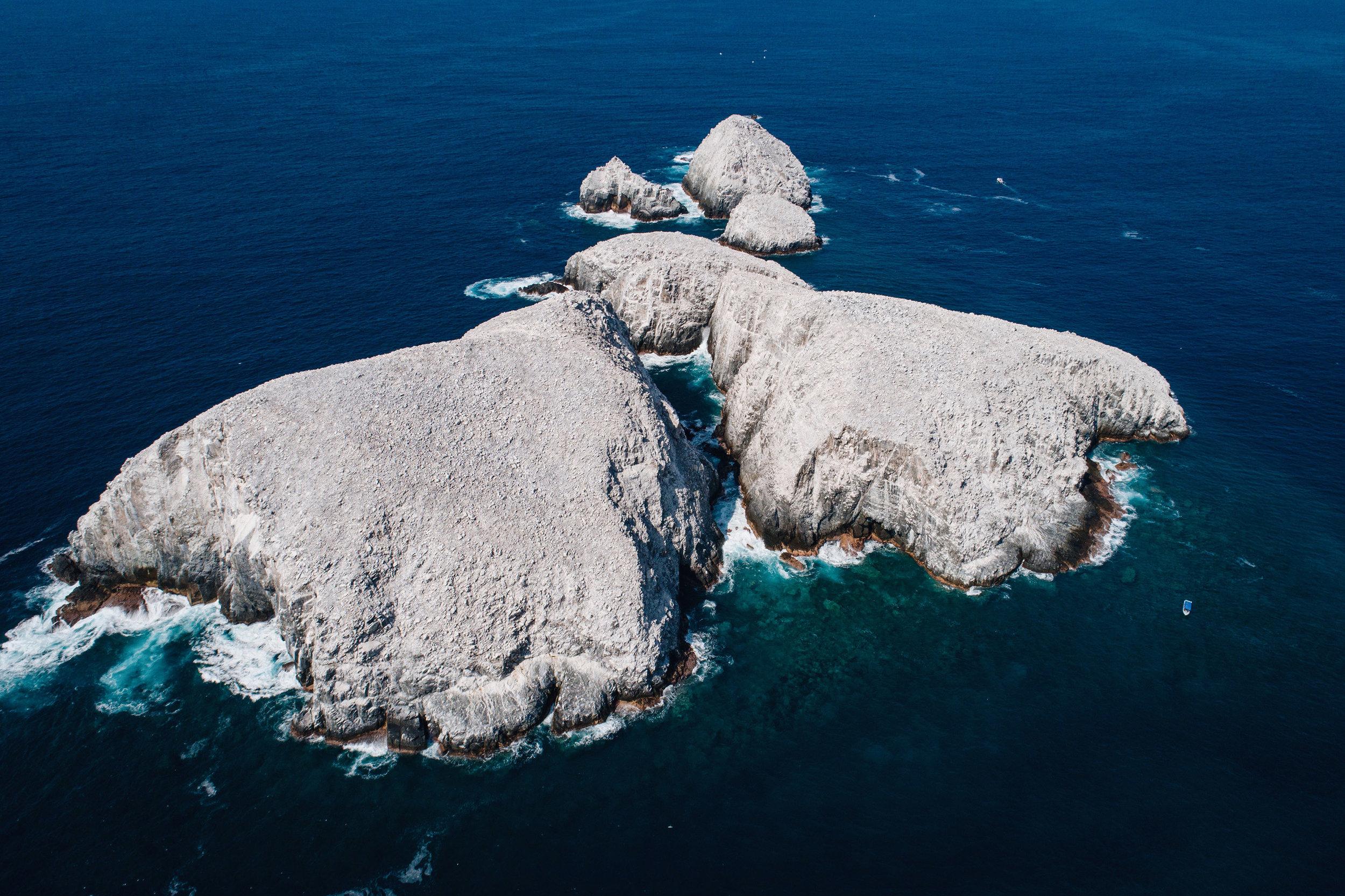 Ballenas-Ixtapa-Zihuatanejo-Fotografia-Heiko-Bothe-14.JPG