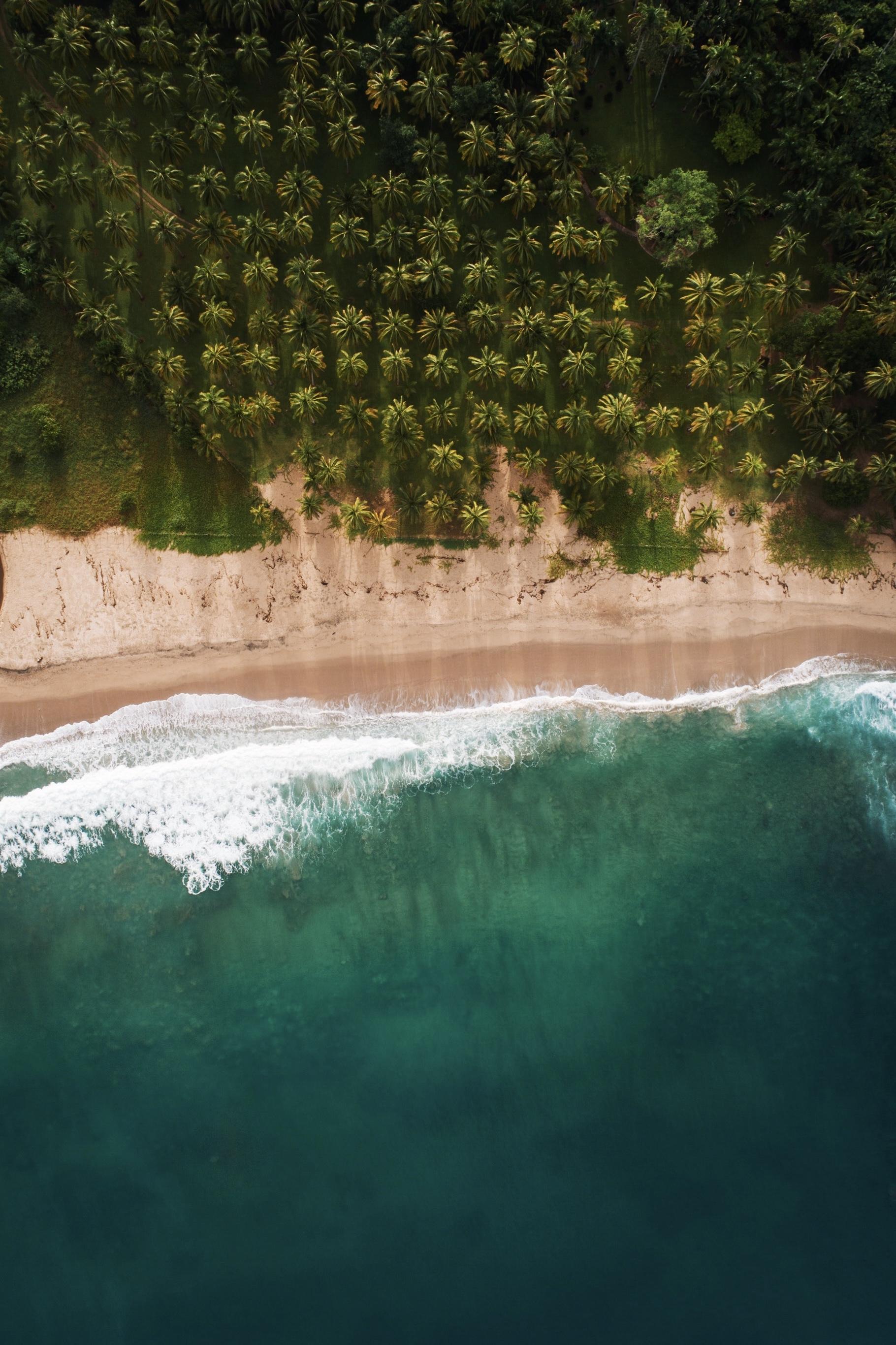 Tristan-Guibald-Surf-México-Sayulita-Pascuales-Zihuatanejo-Fotografía-Heiko-Bothe-7.jpg