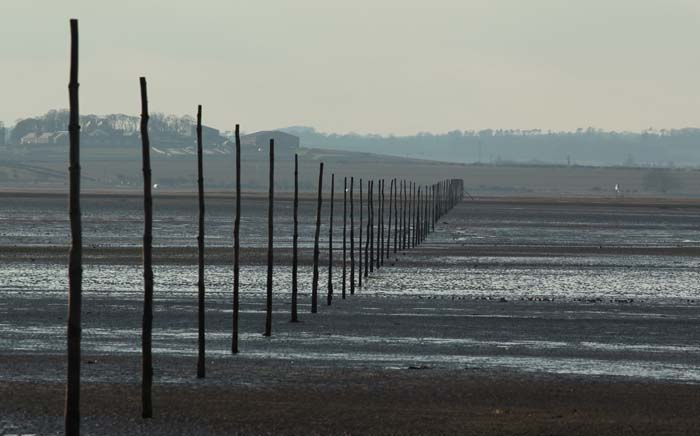 holy-island-causeway-tide-out.jpg