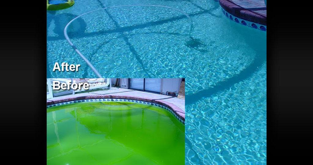 pool-cleaning-company-7.jpg