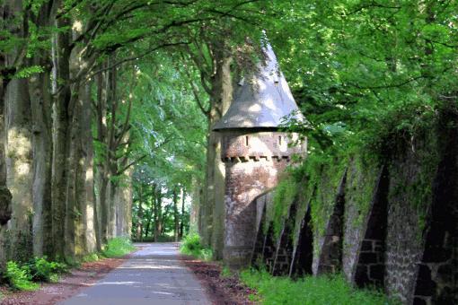 domaine-de-ronchinne-abbaye-de-marderet.png