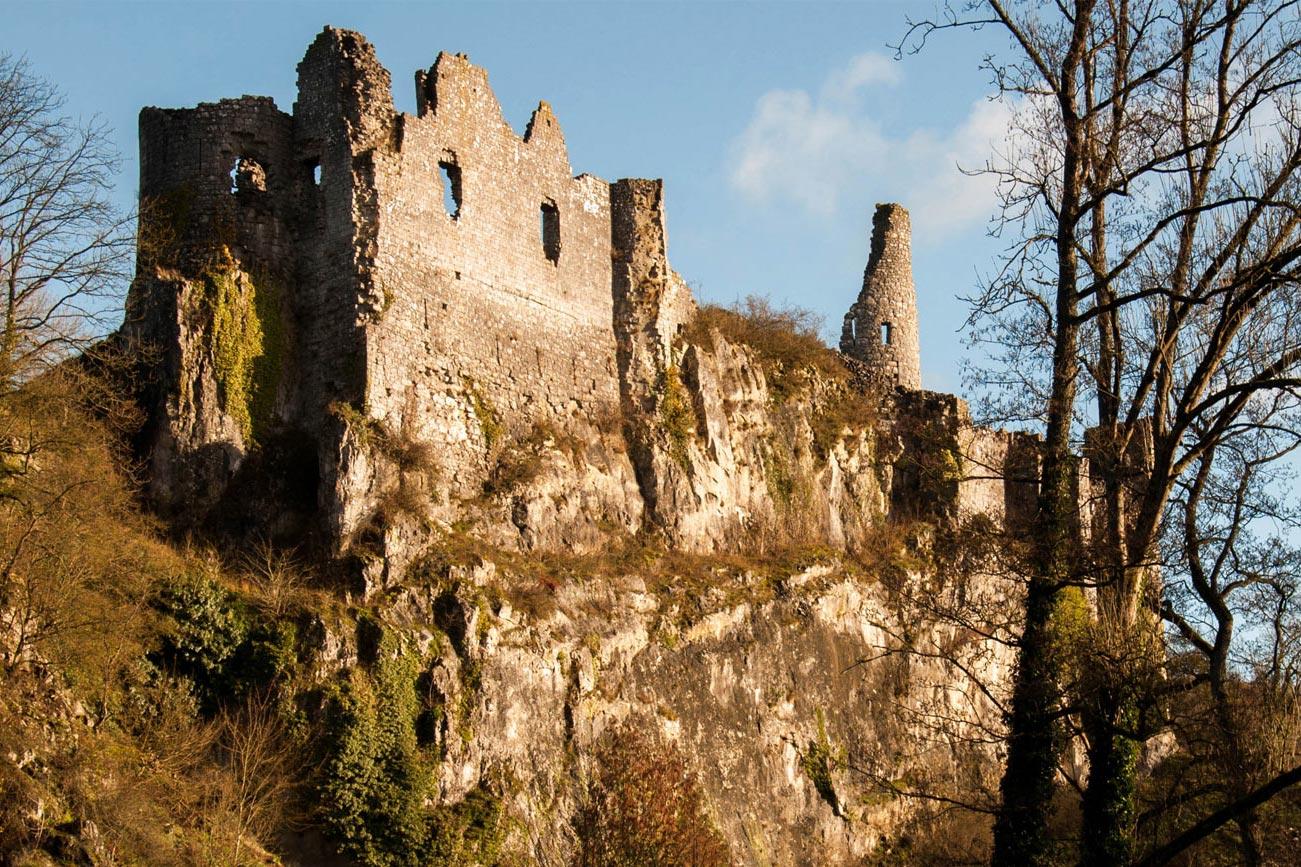 domaine-de-ronchinne-ruines-chateau-fort-de-montaigle.jpg