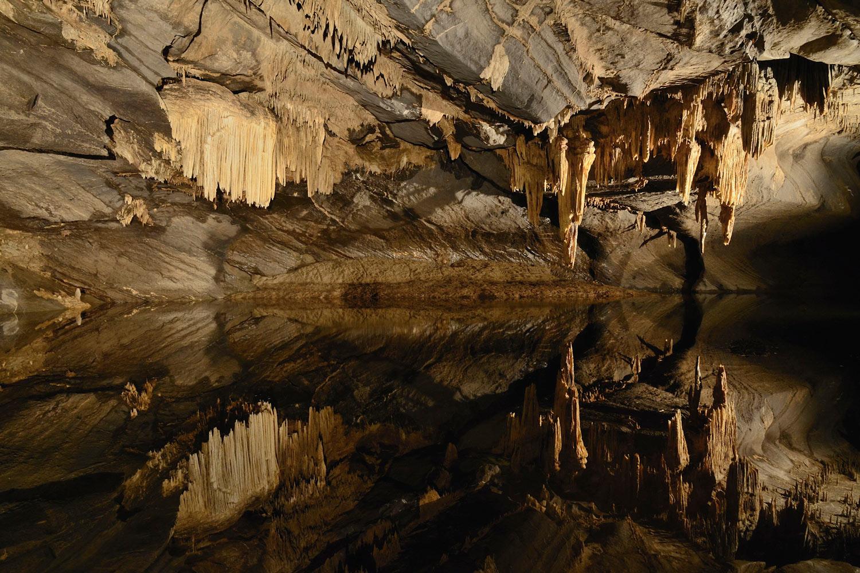 domaine-de-ronchinne-domaine-des-grottes-de-han.jpg
