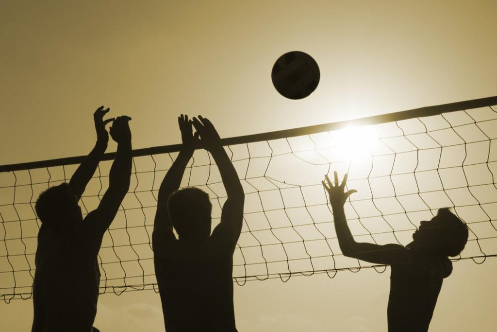 domaine-de-ronchinne-activites-au-domaine-volley.jpg