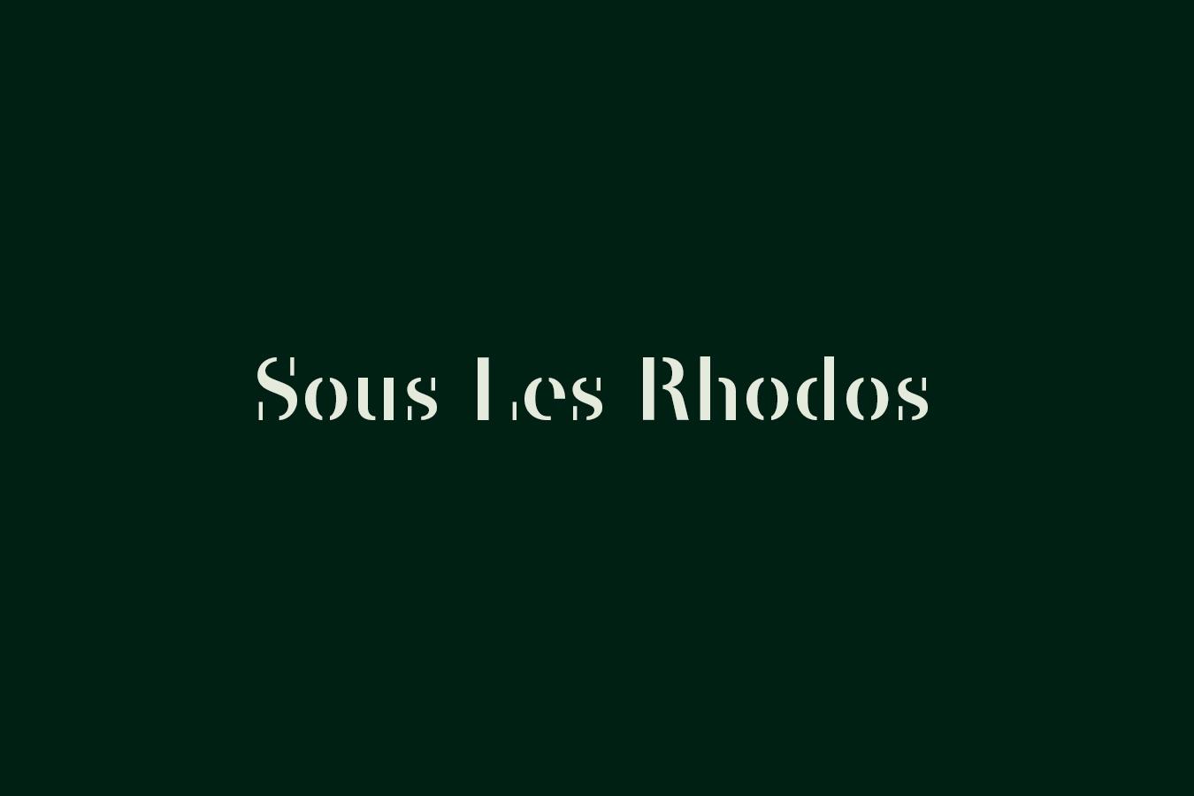 domaine-de-ronchine-seminaires-espaces-insolites-sous-les-rhodos-01.jpg