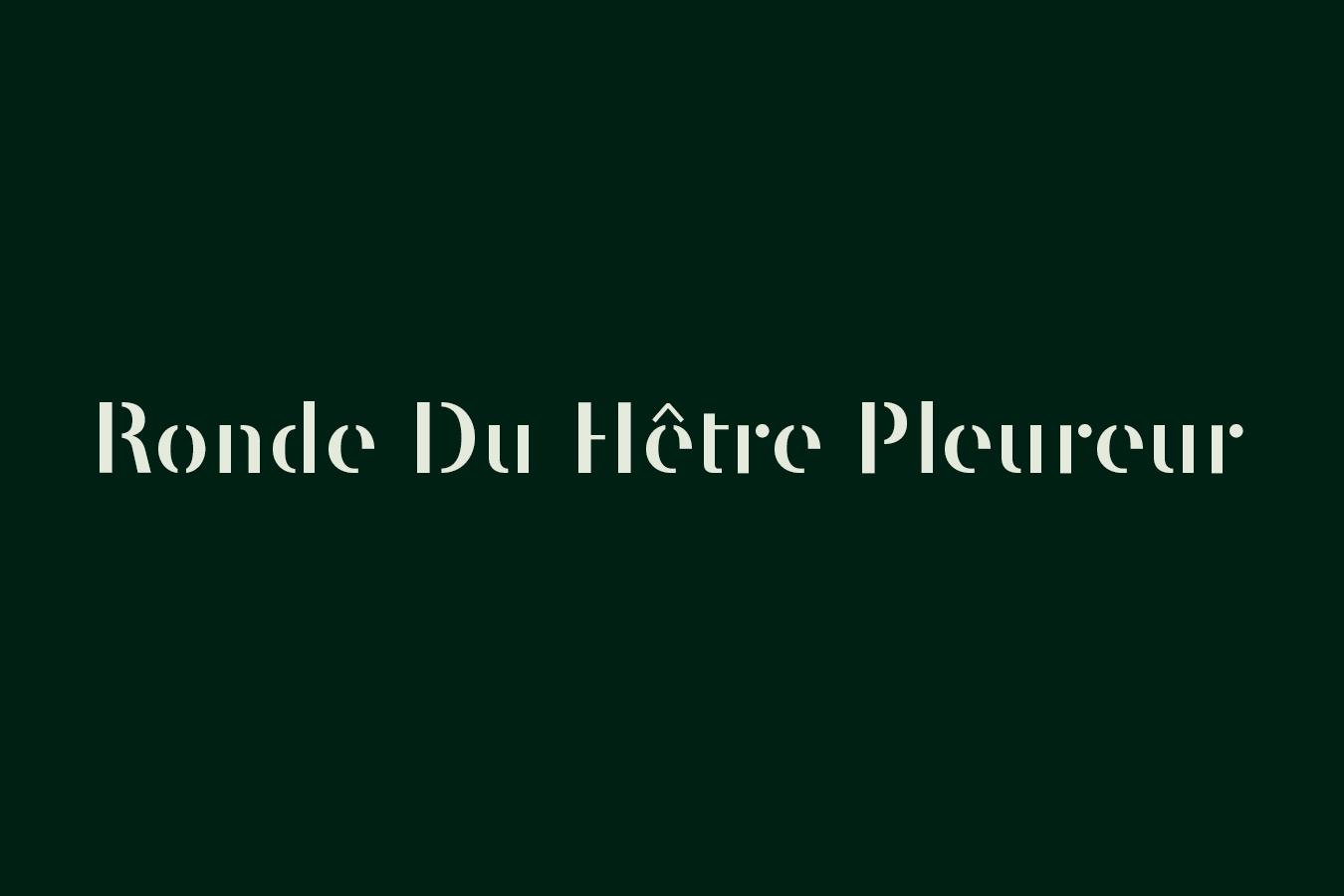 domaine-de-ronchine-seminaires-espaces-insolites-ronde-du-hetre-pleureur-01.jpg