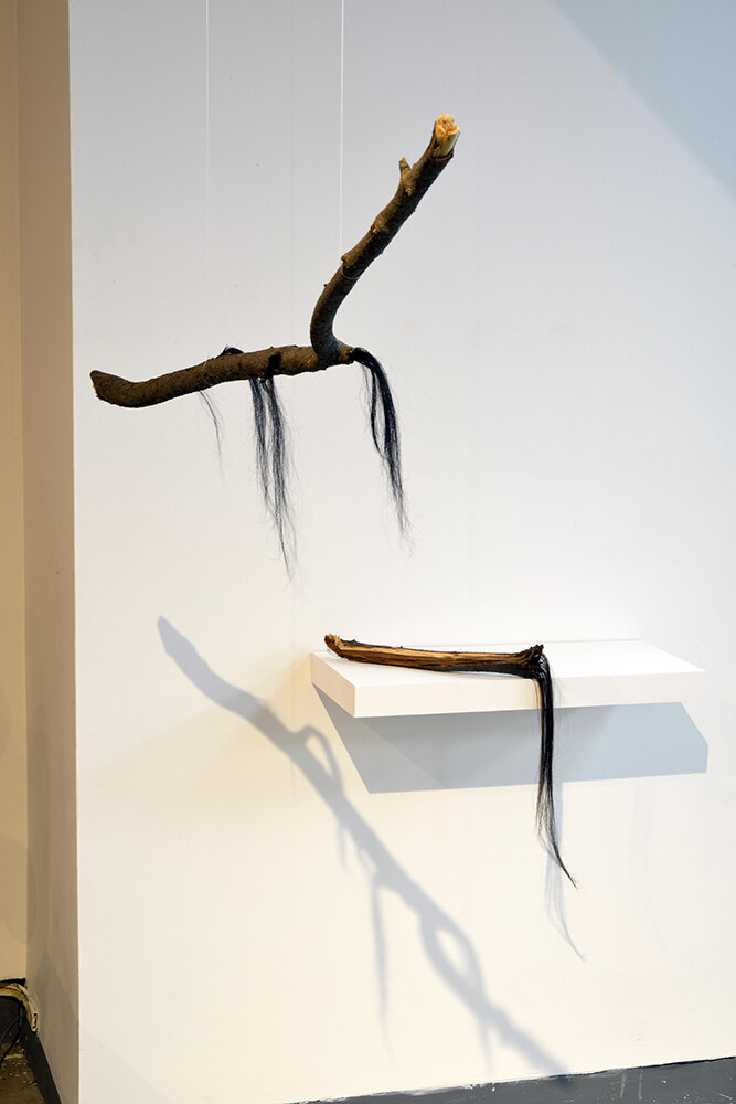 Sheri Nault    Entangled Bodies (1,)   2017,  human hair and branch,   Entangled Bodies (2),   2017, human hair, branch, and wax. Collection of the Artist. Photo by Don Hall.