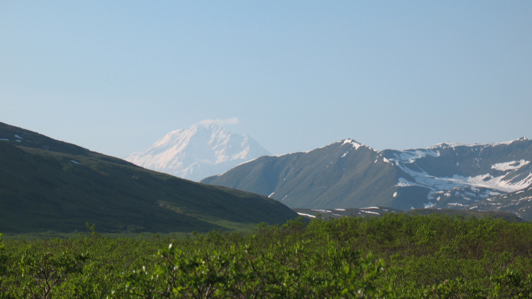 Denali from the southeast, near Mike's property, 2009.